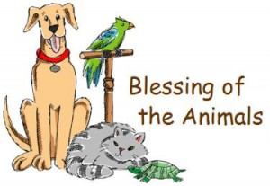 Blessing of the Animals - St Stephen's Anglican Church